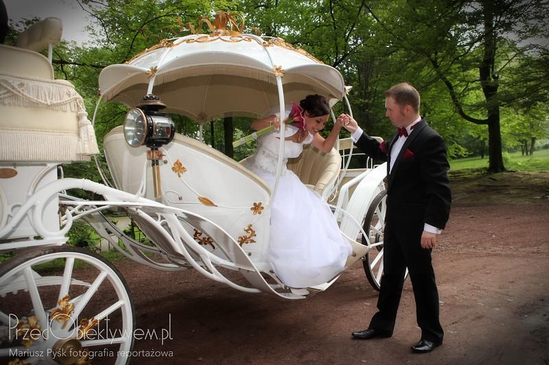 Plener ślubny Marzeny i Piotra